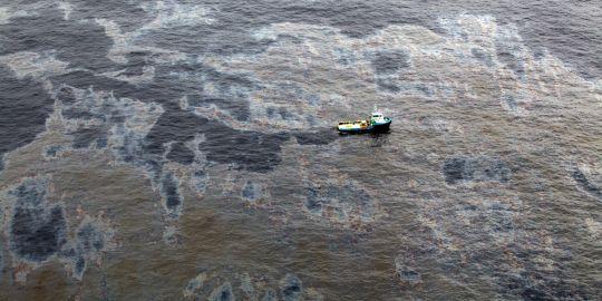 Brésil : Chevron Responsable de la Marée Noire