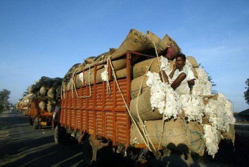 Inde : Embellie des cours du coton