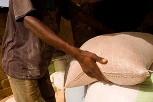 La sécurité alimentaire en Afrique