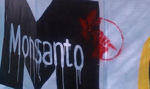 Brésil : Monsanto condamné à payer plus de 6 milliards d'euros