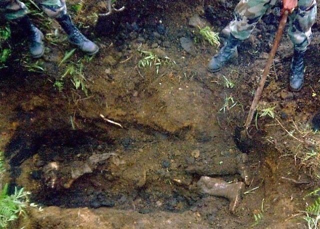 Syrie : une centaine de corps découverts dans des fosses communes dans l'est du pays