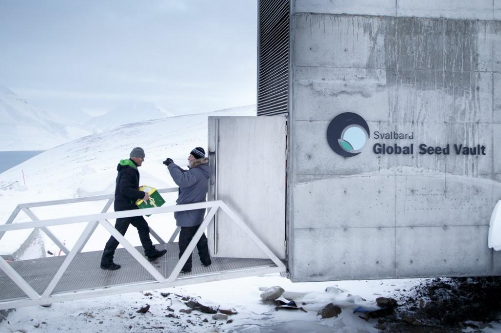 Arctique : « Arche de Noé végétale »