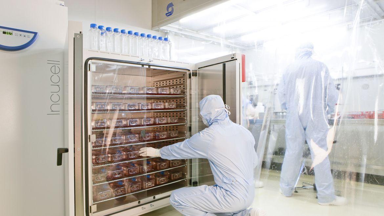Maroc : des chercheurs marocains analysent plus de 3000 génomes du virus Covid