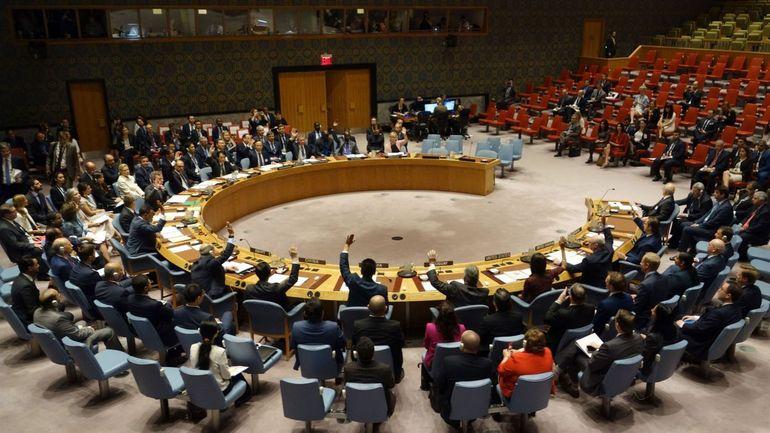 Syrie : La Russie et la Chine opposent leur veto à la prolongation de l'aide transfrontalière