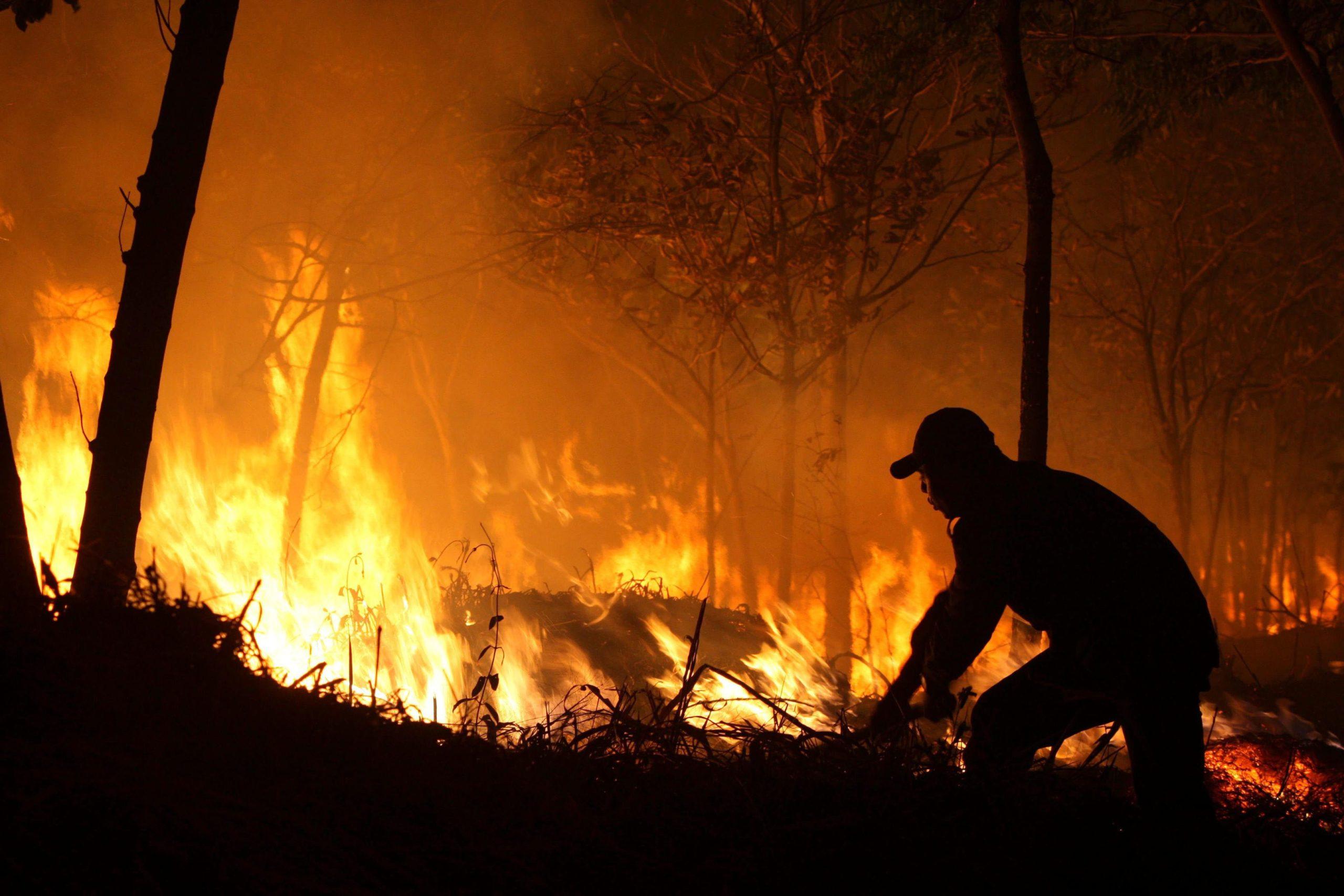La forêt d'Amazonie brûle toujours au Brésil