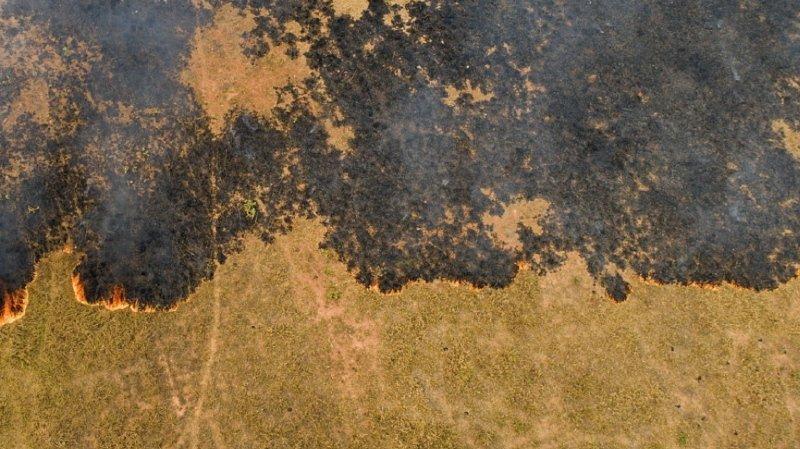 Brésil : L'Amazonie et le Pantanal demeurent en proie aux flammes